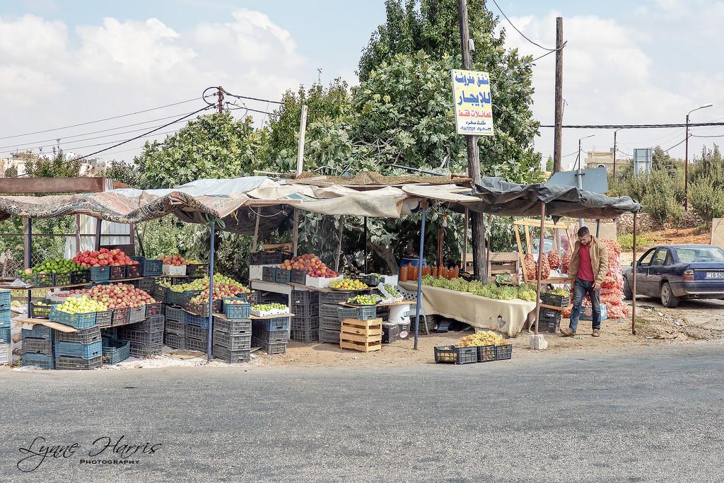 Roadside Market Stand in Jordan by lynne5477