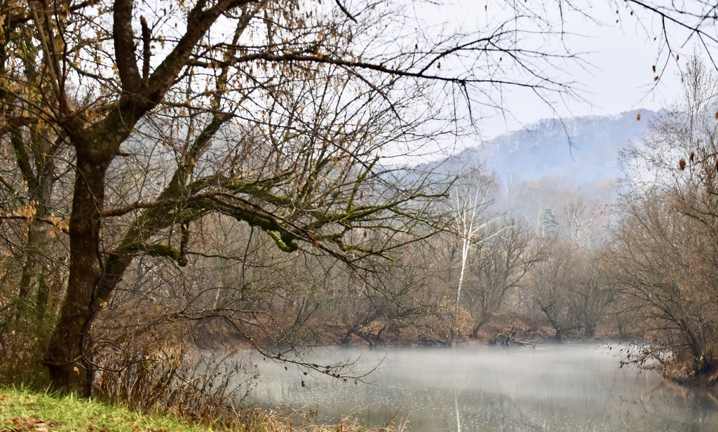 Foggy Afternoon on the River by kathyladley