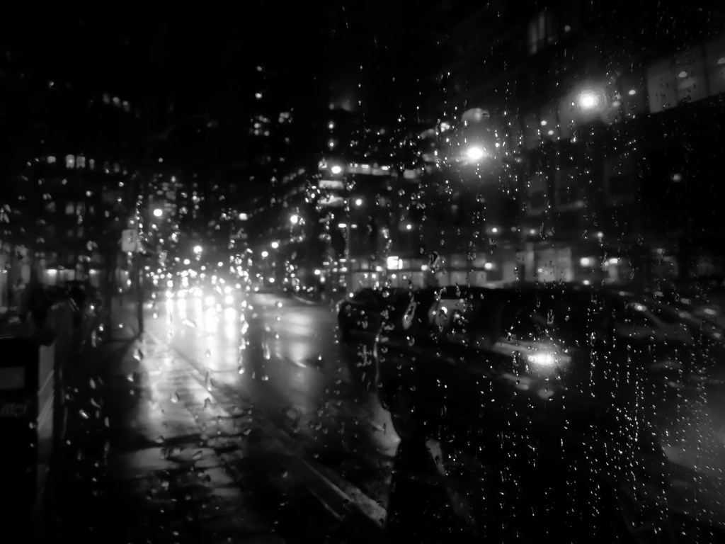 bus shelter in the rain by northy