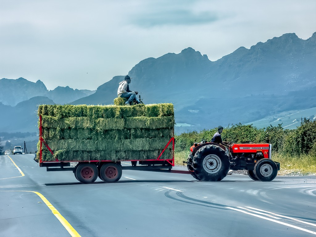Tractors have right of way here  by ludwigsdiana