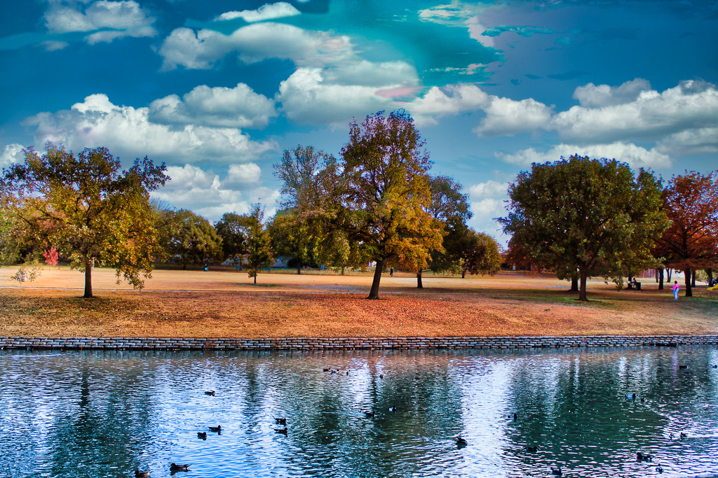 A Day in the Park by judyc57