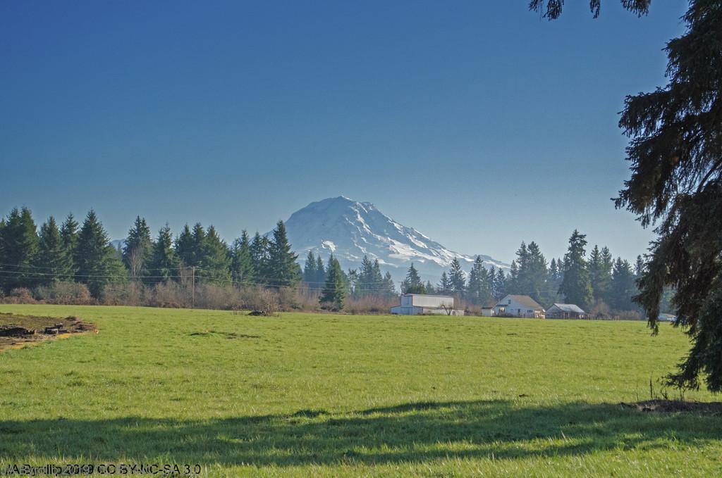 Mt Rainier by byrdlip