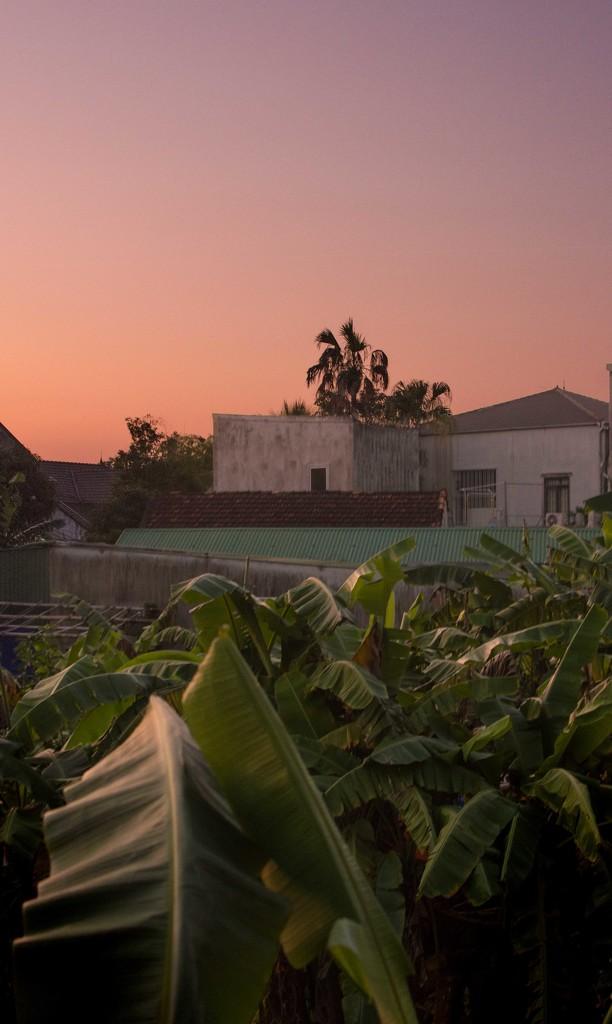 Sunset by blueace