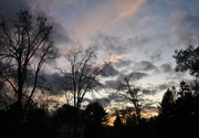 24th Nov 2019 - Evening sky