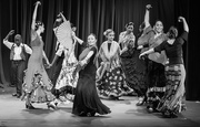 24th Nov 2019 - Dancing Flamenco style