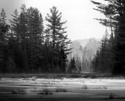 24th Nov 2019 - on Mizzy Lake trail...