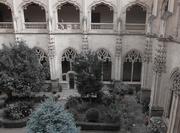 10th Oct 2019 -  Inner courtyard garden