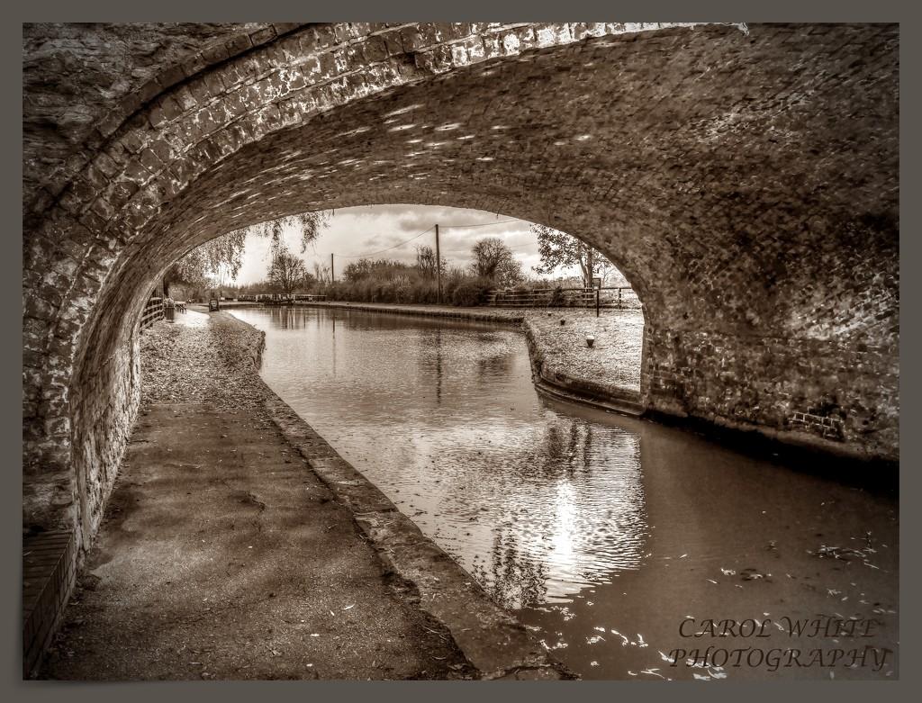 Under The Bridge by carolmw