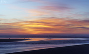 25th Nov 2019 - Seagulls At Sunset