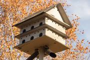 25th Nov 2019 - Double Decker Bird House