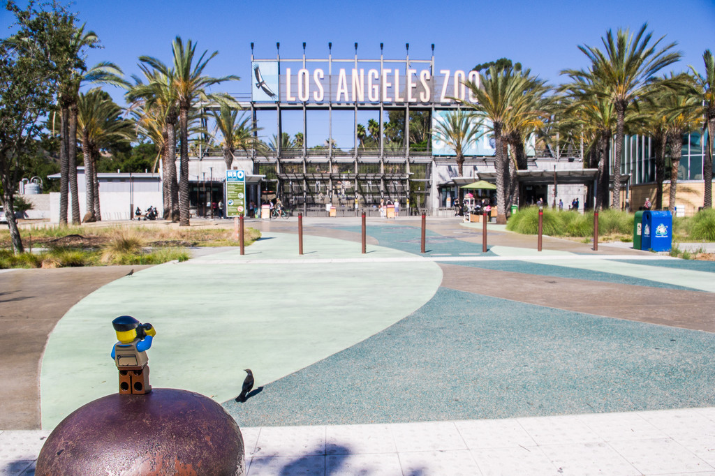 (Day 286) - The Los Angeles Zoo by cjphoto