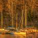 Sailing away by samae