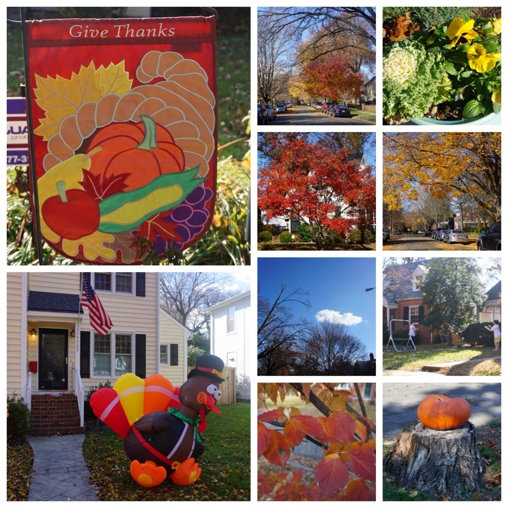 Thanksgiving in My Neighborhood by allie912