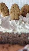 29th Nov 2019 - Farewell Gingerbread Cake.