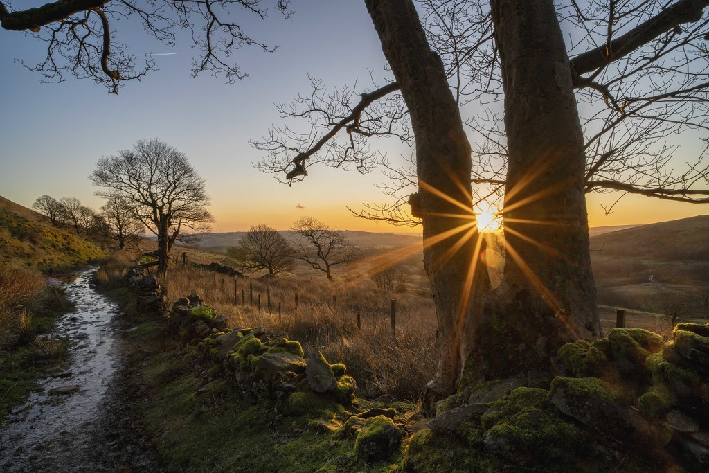 Holcombe Moor. by gamelee