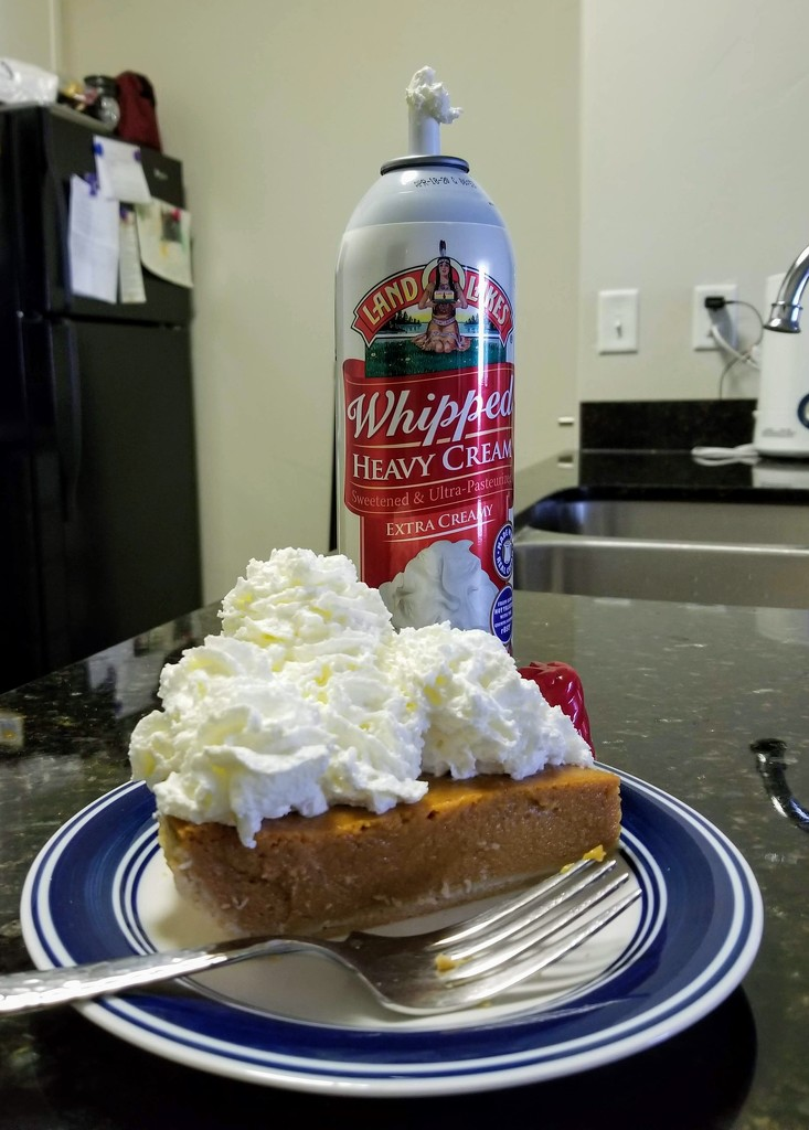 Time for a little whipped cream...and pie! by lindasees