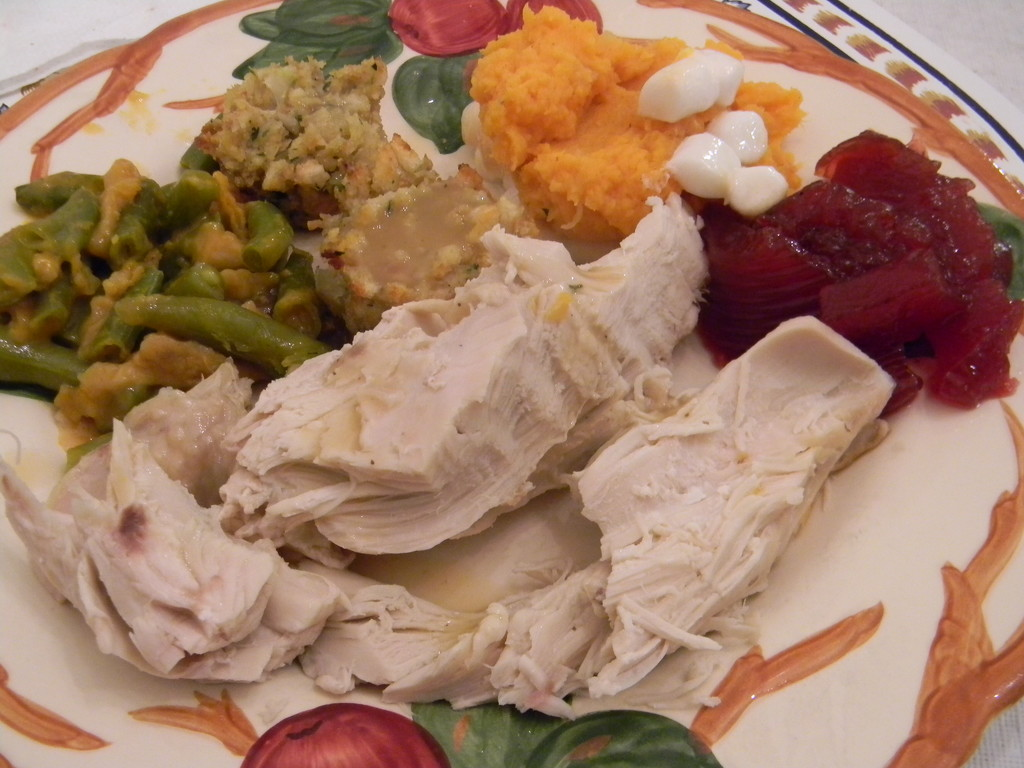 Leftover Thanksgiving Meal  by sfeldphotos