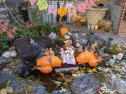 29th Nov 2019 - The Barbie Pond