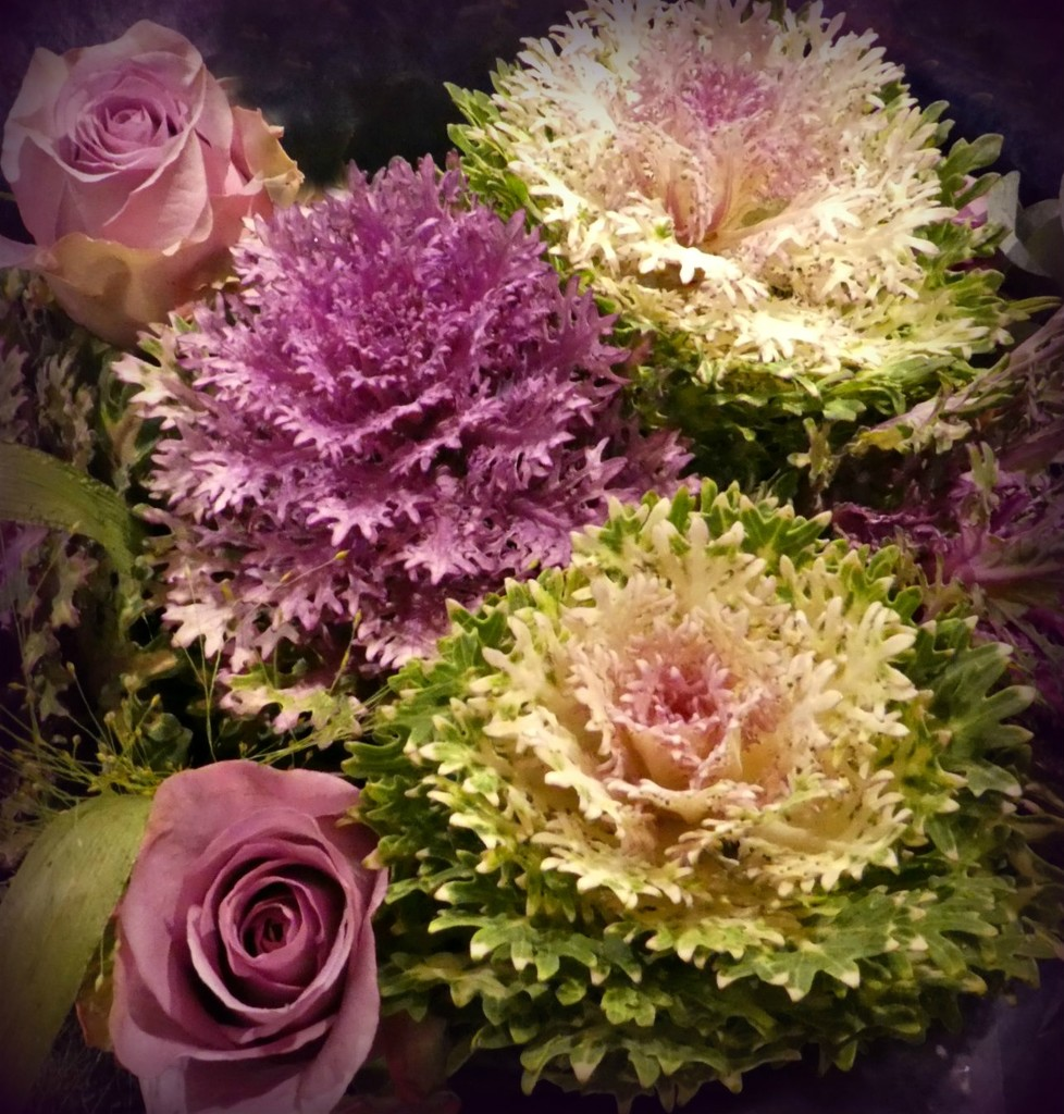Bouquet of cabbages. by wendyfrost