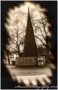 30th Nov 2019 - Christmas tree
