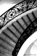 29th Nov 2019 - Stairs