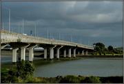 30th Nov 2019 - Mangere Bridge
