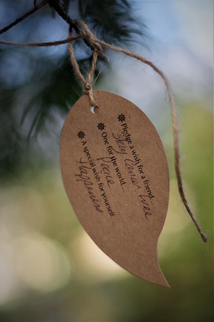 I'll Grant Yew Three Christmas Wishes by 30pics4jackiesdiamond