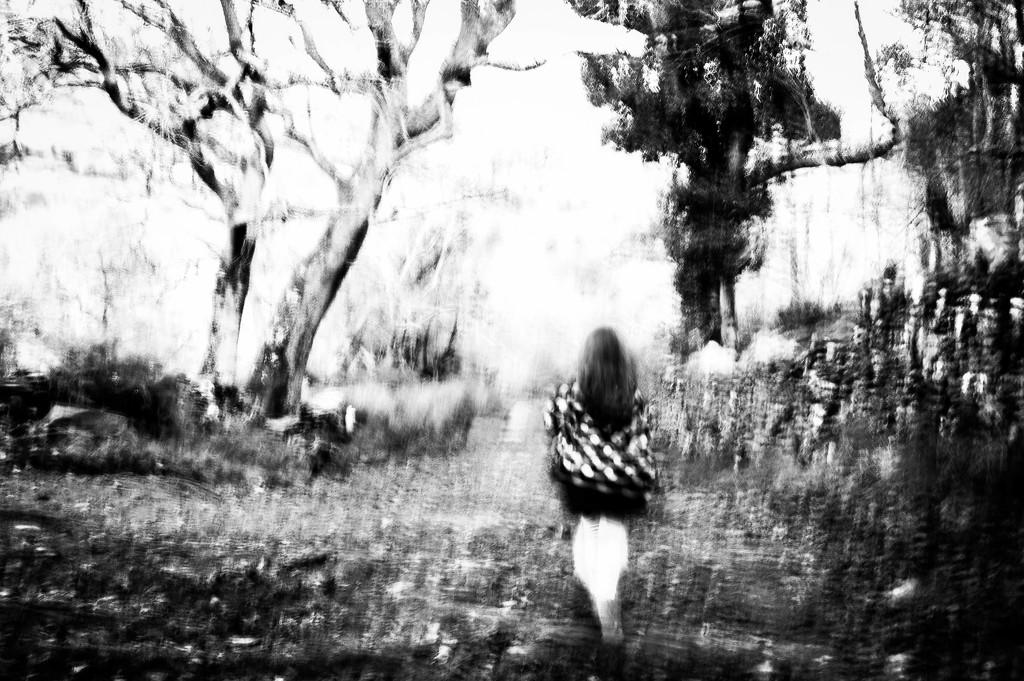 Wanderer by overalvandaan