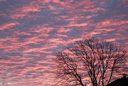 1st Dec 2019 - Sunrise this morning