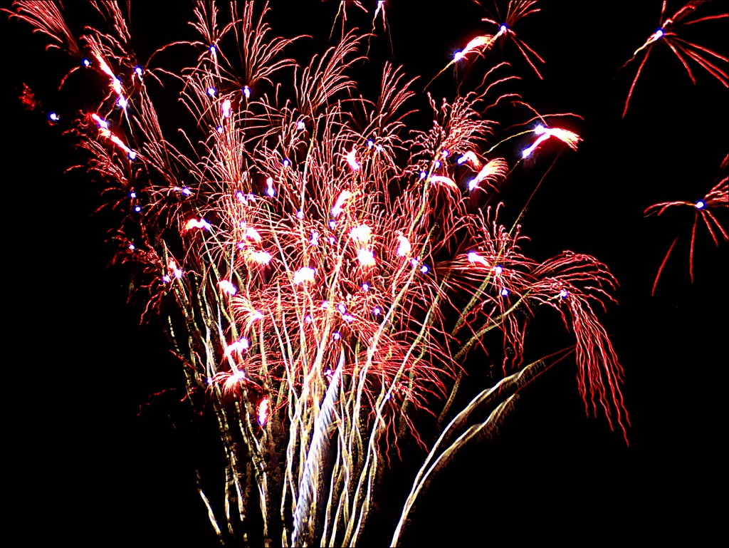 Tree Lighting Fireworks 3 by olivetreeann
