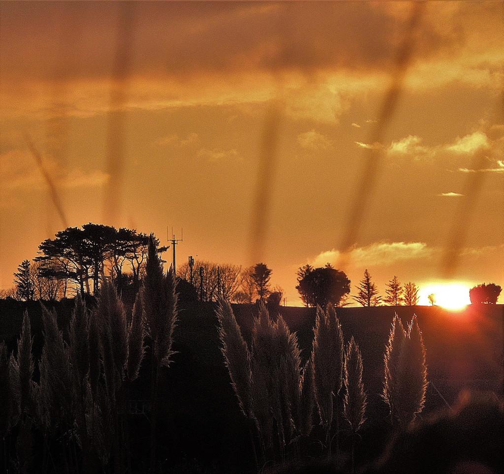 Sunset contre-jour (2) by etienne