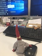 2nd Dec 2019 - Pixie came to work!