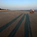 Long shadows on the beach