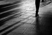3rd Dec 2019 - Long shadows