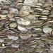 Coin bench