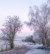 1st Dec 2019 - Winter begins