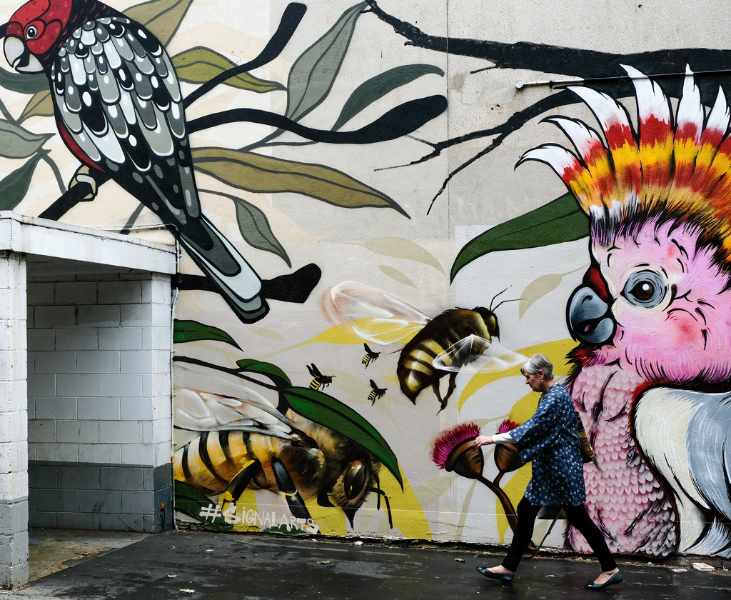 Birds, bees and a concrete monstrosity. by golftragic
