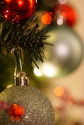 3rd Dec 2019 - Tree Sparkles