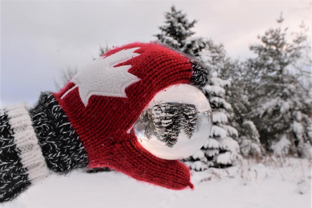 Snow Globe by fayefaye