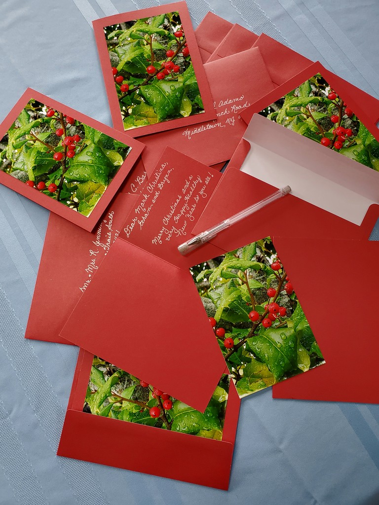 Christmas Cards  by jb030958