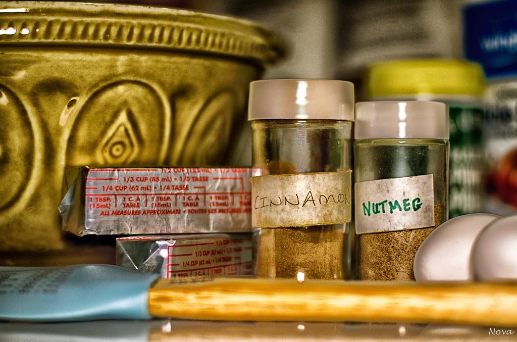 Cinnamon & Nutmeg by novab