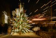 6th Dec 2019 - Christmas tree in hyper-drive