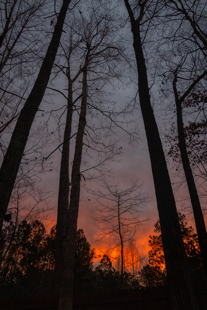December Sunrise by kvphoto