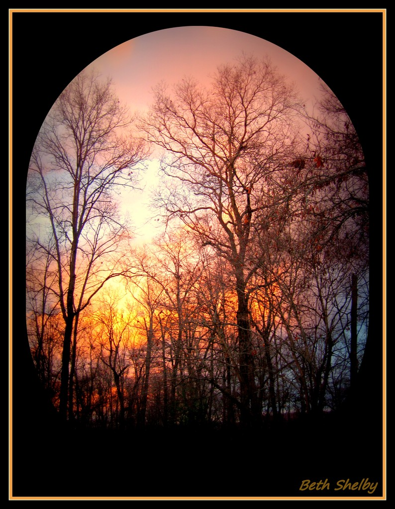 Firey Sky of Winter by vernabeth