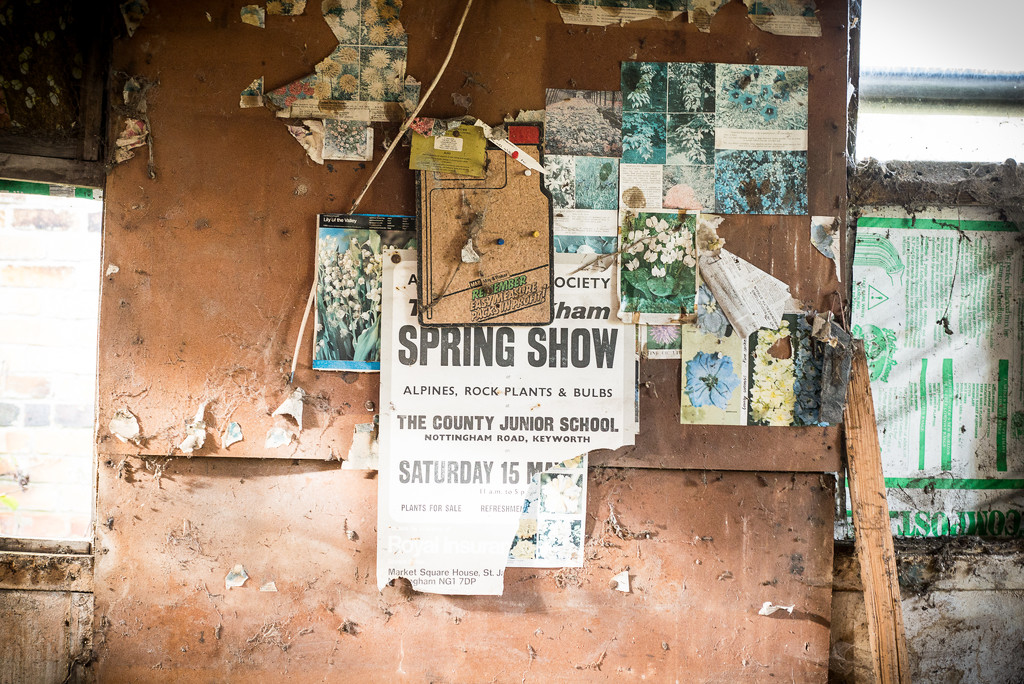 Spring Show by newbank