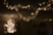 6th Dec 2019 - Christmas Lights - BOB
