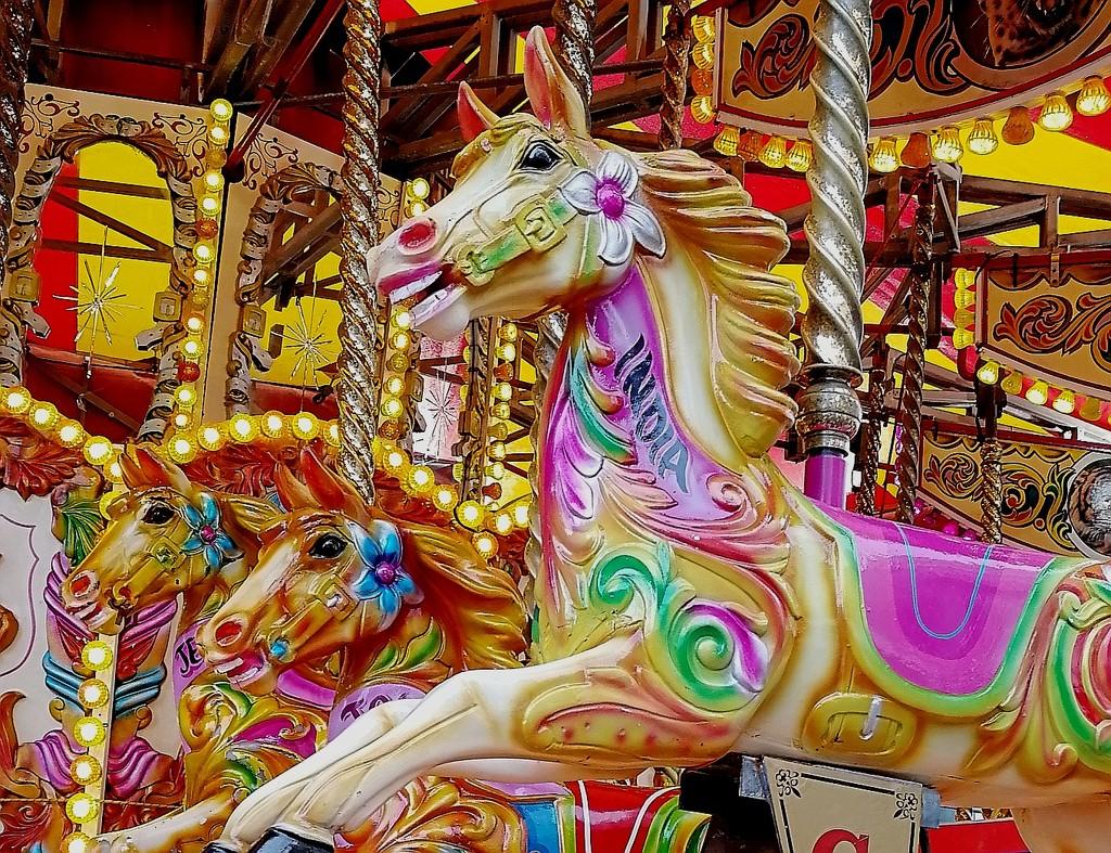 Galloping Horses by ilovelenses