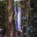 Falls at Blue Lake