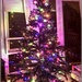 Tree decorated and lit