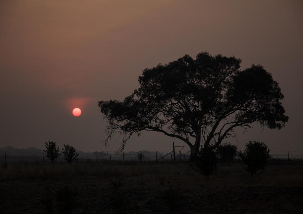 Smokey Sunset by nicolecampbell